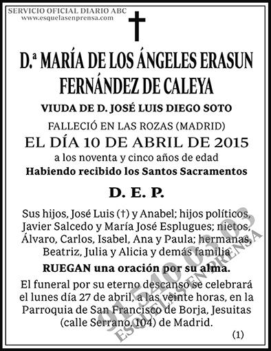 María de los Ángeles Erasun Fernández de Caleya